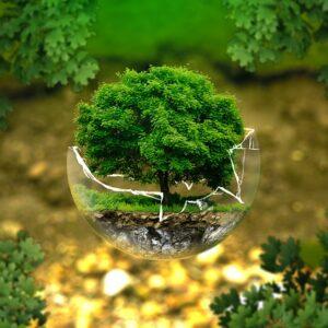 Ecologische voetafdruk verminderen.