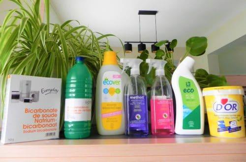 Ecologisch schoonmaken
